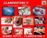 CLANDESTINO 3